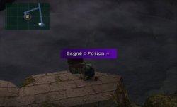 Potion +